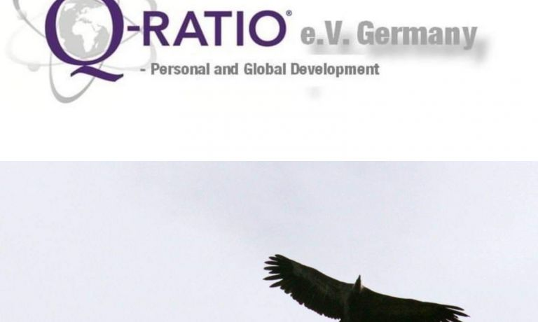 Q-RATIO® e.V. Germany - Personal and Global Development